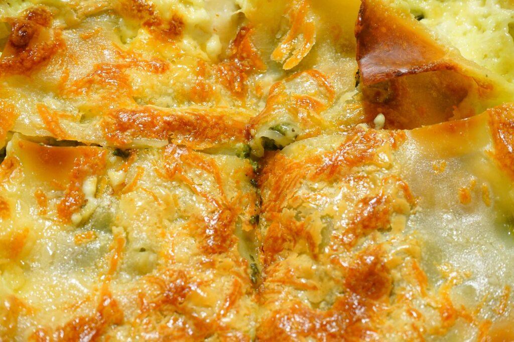 Cannelloni mit Fleischfüllung